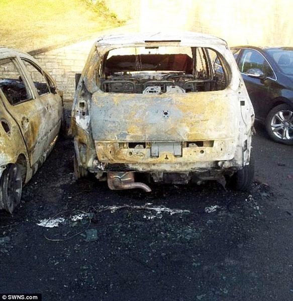 Cặp đôi mới mua chiếc xe được 3 tháng trước khi vụ cháy nổ xảy ra.