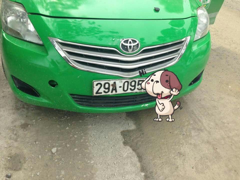 Chiếc taxi Mai Linh do Quyết và Mạnh thuê để đi gây sự.