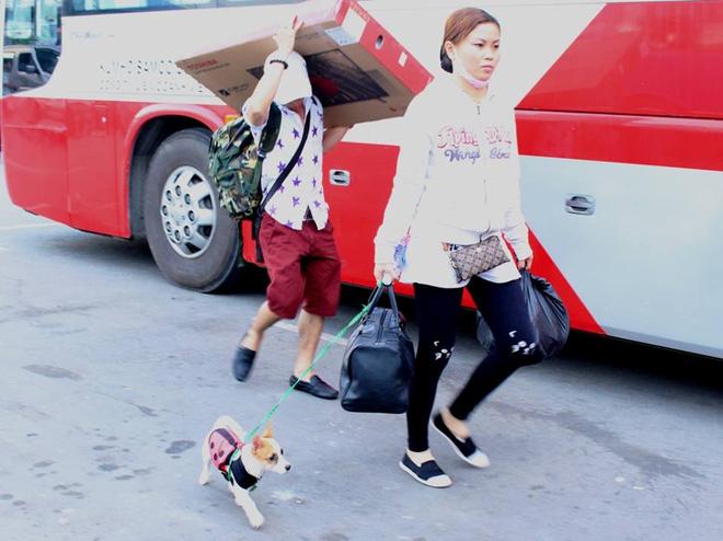 Một người dắt cả thú cưng ra bến xe Miền Tây về quê nghỉ lễ.