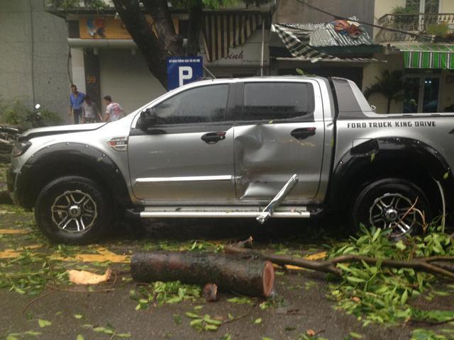 Cây đổ trúng chiếc xe bán tải Ford Ranger...