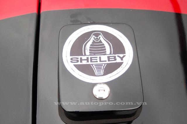 Ngoài ra, logo rắn hổ mang, biểu tượng của những chiếc Shelby Cobra cũng xuất hiện trên bản độ này ở đầu xe, bên hông và đặc biệt là trên nắp bình xăng khá lớn ở đuôi xe.