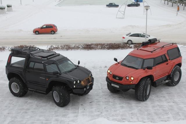 Viking 29031 đã lần đầu tiên được giới thiệu và chạy thử trong triển lãm Army-2016 International Forum ở Alabino thuộc thủ đô Moscow của Nga. Theo nhà sản xuất, Viking 29031 là mẫu xe lội nước toàn địa hình tiên tiến.