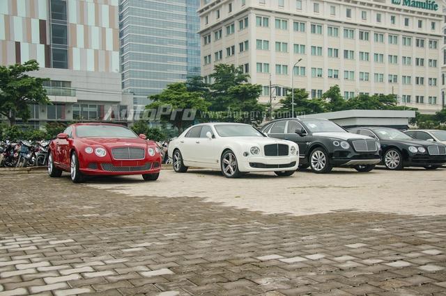 Từ trái sang là mẫu xe thể thao siêu sang Continental GT W12, kế đến là chiếc xe siêu sang đang gây cơn sốt trong giới chơi xe Việt Bentley Mulsanne Speed, hai chiếc mang ngoại thất đen bóng là SUV Bentayga và Flying Spur V8.