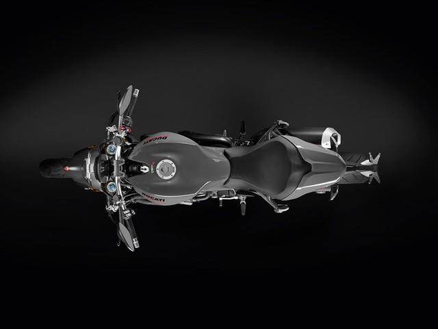 Một số chi tiết của dàn áo sử dụng chất liệu carbon vừa làm tăng tính thẩm mỹ cho quái vật Ducati Monster 1200 2017 vừa giúp giảm trọng lượng đáng kể. Nhờ đó, Ducati Monster 1200 2017 nặng 209 kg ở bản tiêu chuẩn và 211 kg với bản S.