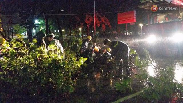 Nhân viên đội mưa thu dọn cây ngã.