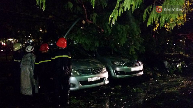 Theo ghi nhận, trên đường Cách mạng tháng 8 cũng có cây đổ. Đến 20h15, mưa vẫn còn dai dẳng nhưng chưa gây ngập nặng như đêm qua.