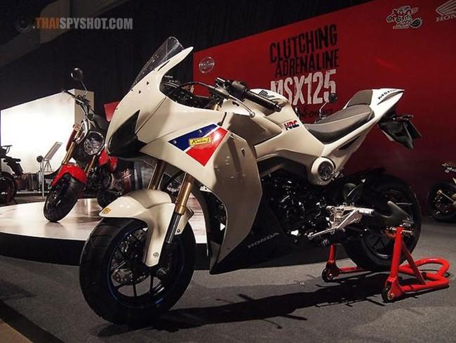 Vừa ra mắt, Honda MSX125 đã có hàng tá bản độ 29