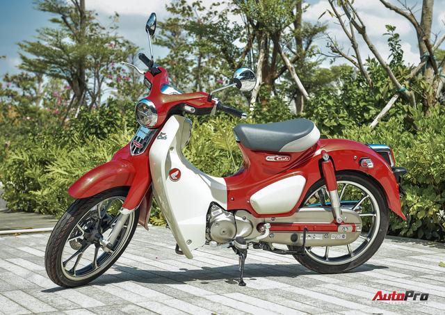 Đại lý xe máy tư nhân chết dần trước sức ép chính hãng tại Việt Nam - Ảnh 1.