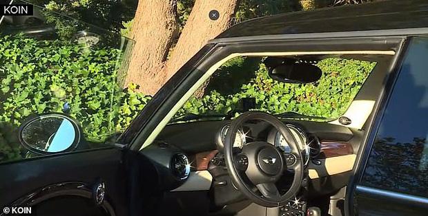 Đột nhập vào xe MINI Cooper, tên trộm bị ghi lại hình ảnh khiến dân tình không nhịn được cười - Ảnh 3.