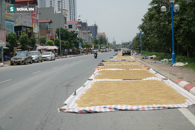 Cận cảnh đường dẫn lên cây cầu đẹp nhất Việt Nam bị người dân Hà Nội hô biến thành nơi phơi thóc - Ảnh 2.