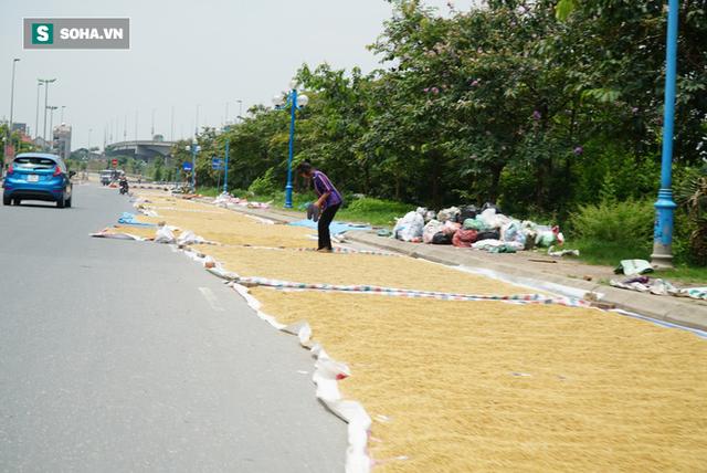 Cận cảnh đường dẫn lên cây cầu đẹp nhất Việt Nam bị người dân Hà Nội hô biến thành nơi phơi thóc - Ảnh 4.