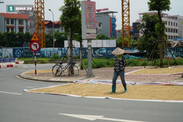 Cận cảnh đường dẫn lên cây cầu đẹp nhất Việt Nam bị người dân Hà Nội hô biến thành nơi phơi thóc - Ảnh 8.