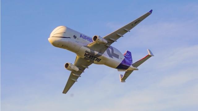 Máy bay cá voi dễ thương Airbus Beluga XL chính thức được đưa vào hoạt động sau một thời gian dài thử nghiệm - Ảnh 4.