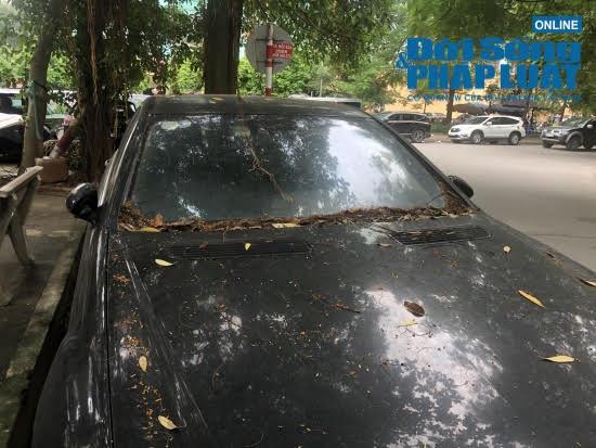 Hà Nội: Xót xa nhìn Bentley, BMW tiền tỷ bị chủ nhân bỏ quên, chịu cảnh dầm mưa, dãi nắng - Ảnh 10.