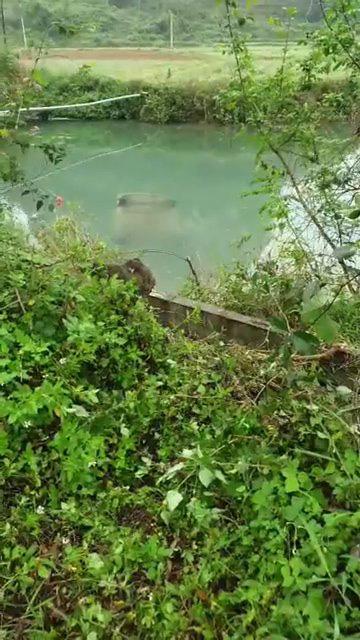 Ô tô lật ngửa chìm nghỉm dưới suối, ảnh hiện trường khiến nhiều người lo lắng tình trạng của nữ tài xế - Ảnh 1.