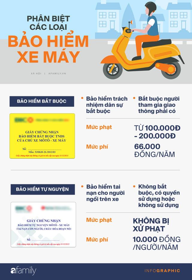 Infographic: Bảo hiểm xe máy 10 nghìn bán đầy đường có giúp được gì khi CSGT dừng xe kiểm tra?  - Ảnh 2.