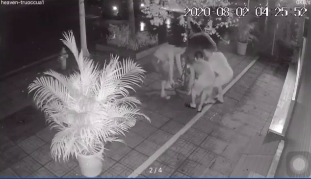4 giờ sáng, 3 người đàn ông đi ô tô rủ nhau bê chậu hoa giấy bên đường mang về
