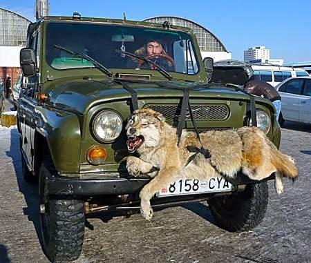 Những chiếc xe Nga đã ít xuất hiện tại Mông Cổ. Ảnh: Horizonesunlimited