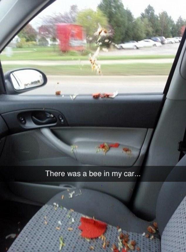 Chú ong này có lẽ không biết đến câu: Trời đánh tránh bữa ăn.