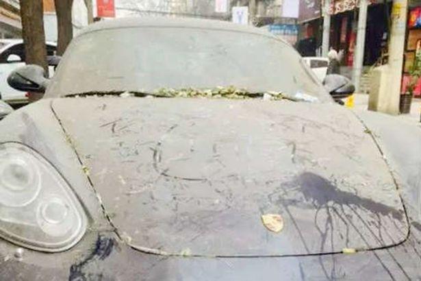 Chiếc Porsche Boxster đắt tiền bị bụi và lá cây phủ lên.
