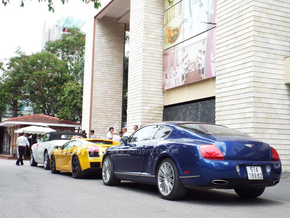 Được biết đoàn xe rước dâu đỗ tại khách sạn trên đường Bạch Đằng, Hải Phòng và đều thuộc sở hữu của một đại gia tại Hà Nội, trước đó, các siêu xe này từng xuất hiện trong buổi rước dâu tại đám cưới của Á hậu Trà My.