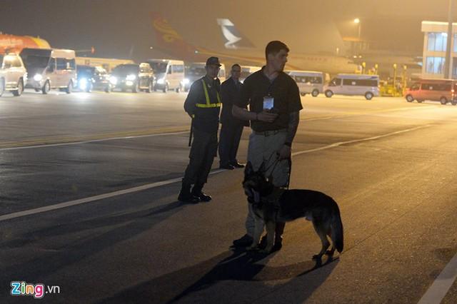 Chó nghiệp vụ được huy động ra tận sân đỗ đảm bảo an ninh.