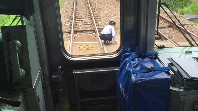 Bác lái tàu người Nhật dừng cả chuyến tàu để nhặt vài củ khoai cho bà lão khốn khổ