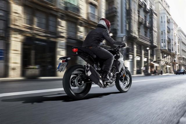 Honda CB300R 2018 - Đối thủ mới dành cho Kawasaki Z300 và Yamaha MT-03 - Ảnh 9.