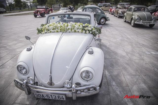 Chiêm ngưỡng dàn bọ già Volkswagen Beetle đủ sắc màu tại Hà Nội - Ảnh 4.