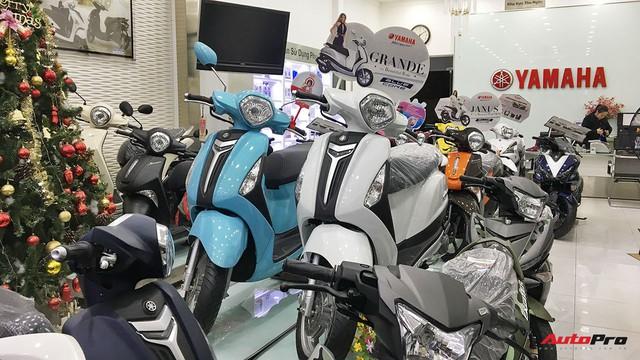 Cuối năm, giá xe tay ga biến động khó lường tại Việt Nam - Ảnh 2.