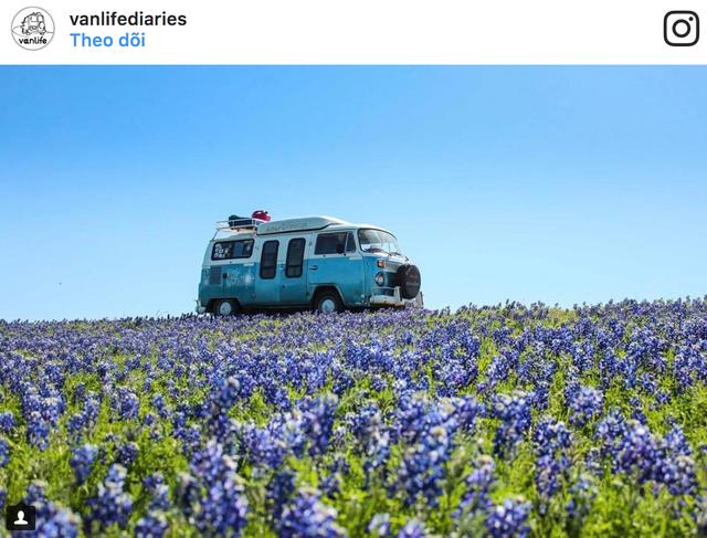 Sống tự do, nhiều trải nghiệm với xe van - Ảnh 1.