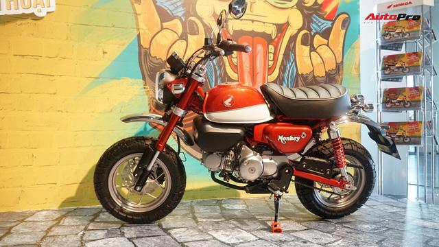 Chi tiết Honda Monkey - Xe khỉ giá ngang Honda SH - Ảnh 2.