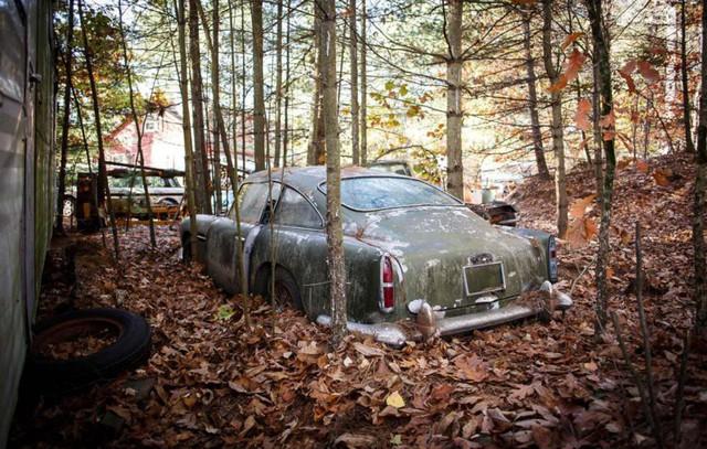 Bị bỏ hoang 40 năm trong rừng, xe Aston Martin độn giá gấp 100 lần so với ban đầu - Ảnh 1.
