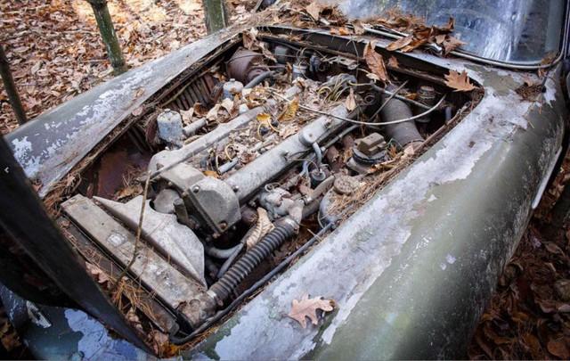 Bị bỏ hoang 40 năm trong rừng, xe Aston Martin độn giá gấp 100 lần so với ban đầu - Ảnh 5.