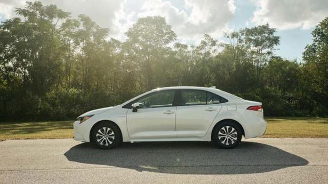 Chuẩn bị có sedan Suzuki sử dụng khung gầm Toyota Corolla Altis - Ảnh 1.
