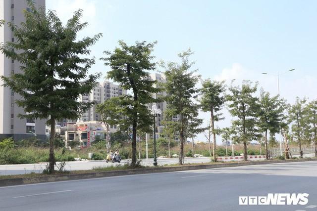 Ảnh: Cận cảnh phố 8 làn xe ở Hà Nội mang tên nhà tư sản Trịnh Văn Bô - Ảnh 7.