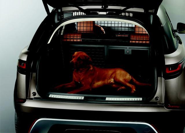 Chào năm Mậu Tuất, Land Rover ra mắt gói phụ kiện dành cho… chó cưng - Ảnh 2.