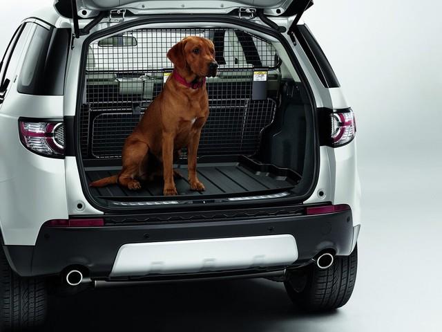 Chào năm Mậu Tuất, Land Rover ra mắt gói phụ kiện dành cho… chó cưng - Ảnh 1.