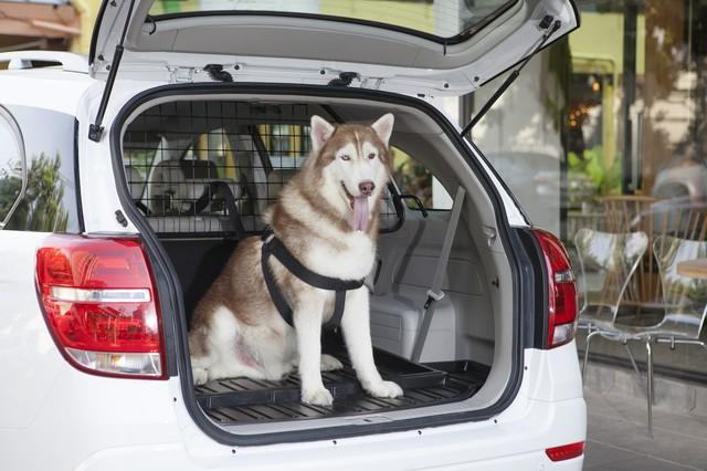 10 ưu điểm của SUV mà sedan và hatchback phải chào thua - Ảnh 6.