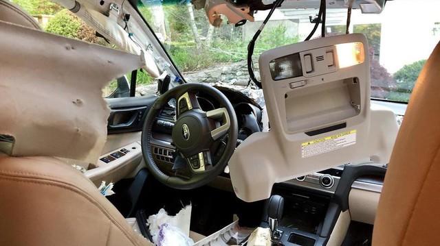 Quên khóa cửa xe, chủ xe méo mặt vì bị gấu lẻn vào phá tan nội thất