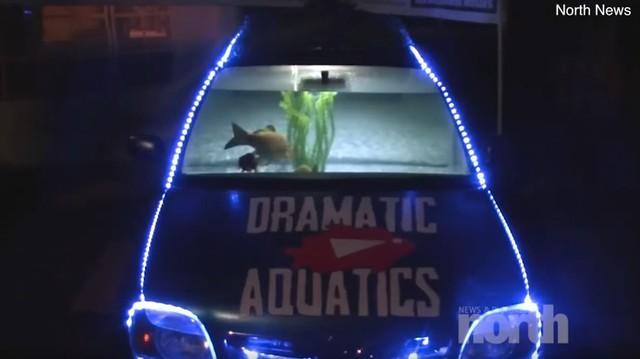 Dân chơi biến xe Nissan thành bể cá mà không mất tới 1 xu