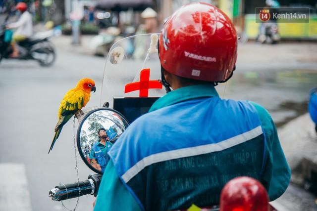 Ông cụ nhặt rác và chú vẹt ở Sài Gòn trên chiếc xe cứu thương đáng yêu được chế tạo từ phế liệu - Ảnh 1.