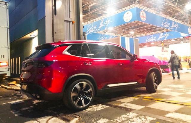 Chùm ảnh: Cận cảnh 2 xe VinFast được vận chuyển tới Paris Motor Show - Ảnh 9.