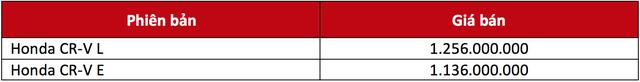 Honda CR-V 7 chỗ chỉ có 2 phiên bản, giá niêm yết cao nhất hơn 1,25 tỷ đồng - Ảnh 1.
