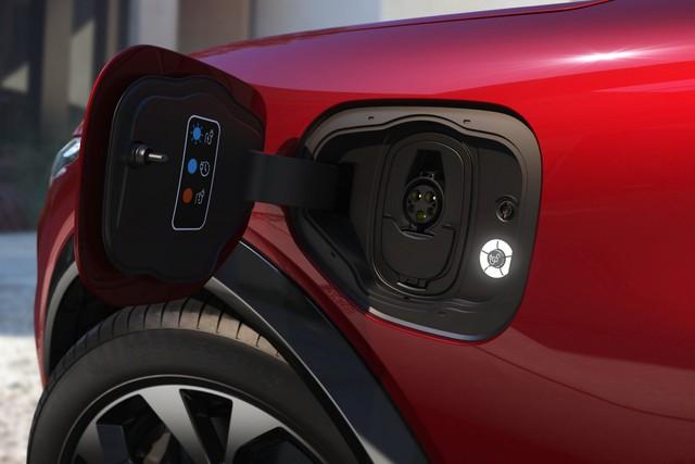 Ra mắt Ford Mustang Mach-E: SUV thuần điện xác Ngựa hoang, hồn Explorer - Ảnh 15.