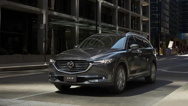 Mazda CX-8 rục rịch ra mắt Việt Nam, Hyundai Santa Fe cần dè chừng - Ảnh 1.