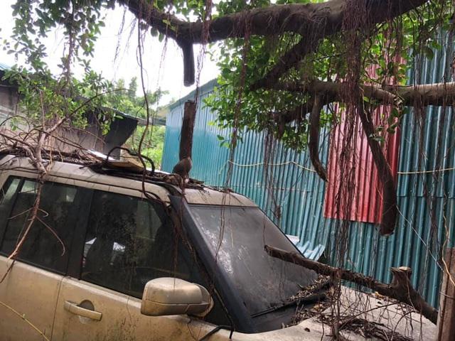Xót xa nhìn cảnh loạt xế đắt tiền mơ ước của nhiều người bị bỏ hoang tại Việt Nam - Ảnh 5.