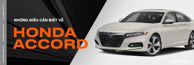 Honda Accord 2019 lộ phiên bản và giá tạm tính 1,2 tỷ đồng ngang Toyota Camry - Ảnh 4.