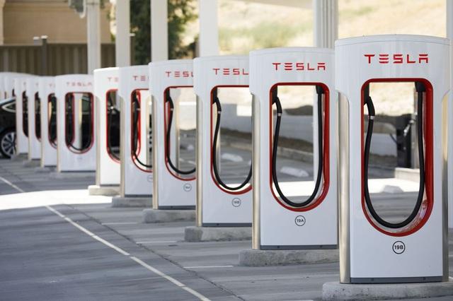 Singapore đáp trả cực gắt tuyên bố của tỉ phú Elon Musk về xe điện - Ảnh 3.