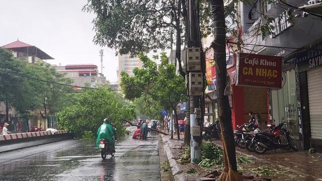 Hà Nội mưa lớn, nhiều ô tô bị cây đè bẹp - Ảnh 3.